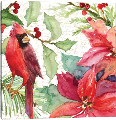 Poinsettia And Cardinal II Canvas Art Print