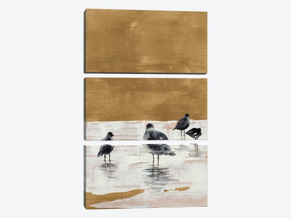 Seagulls Chillin' by Lanie Loreth 3-piece Canvas Artwork
