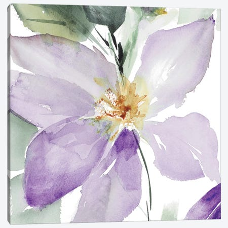 Clematis in Purple Shades I Canvas Print #LNL39} by Lanie Loreth Canvas Art