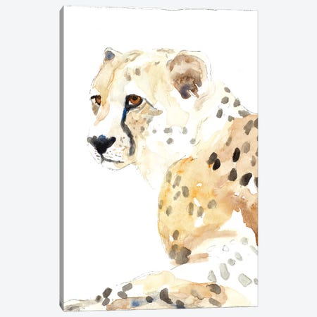 Seated Cheetah Canvas Print #LNL400} by Lanie Loreth Art Print