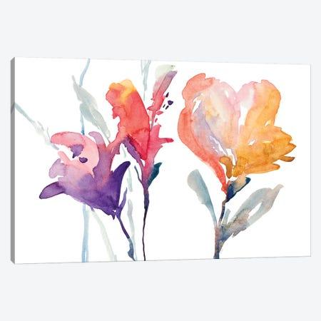 September Blooms I Canvas Print #LNL402} by Lanie Loreth Art Print