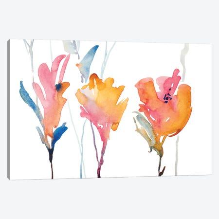 September Blooms II Canvas Print #LNL403} by Lanie Loreth Art Print