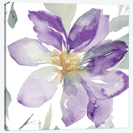 Clematis in Purple Shades II Canvas Print #LNL40} by Lanie Loreth Canvas Art Print
