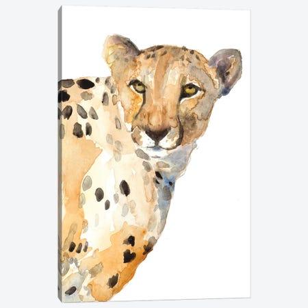 Standing Cheetah Canvas Print #LNL412} by Lanie Loreth Canvas Wall Art