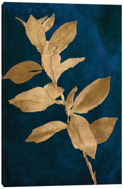 Gold Leaves on Navy IV Canvas Art Print