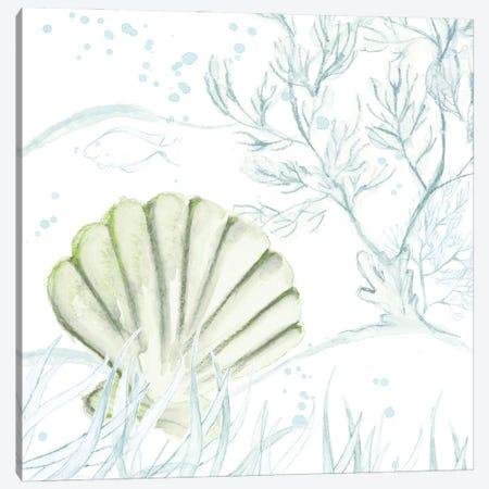 Green Shell Canvas Print #LNL502} by Lanie Loreth Canvas Art