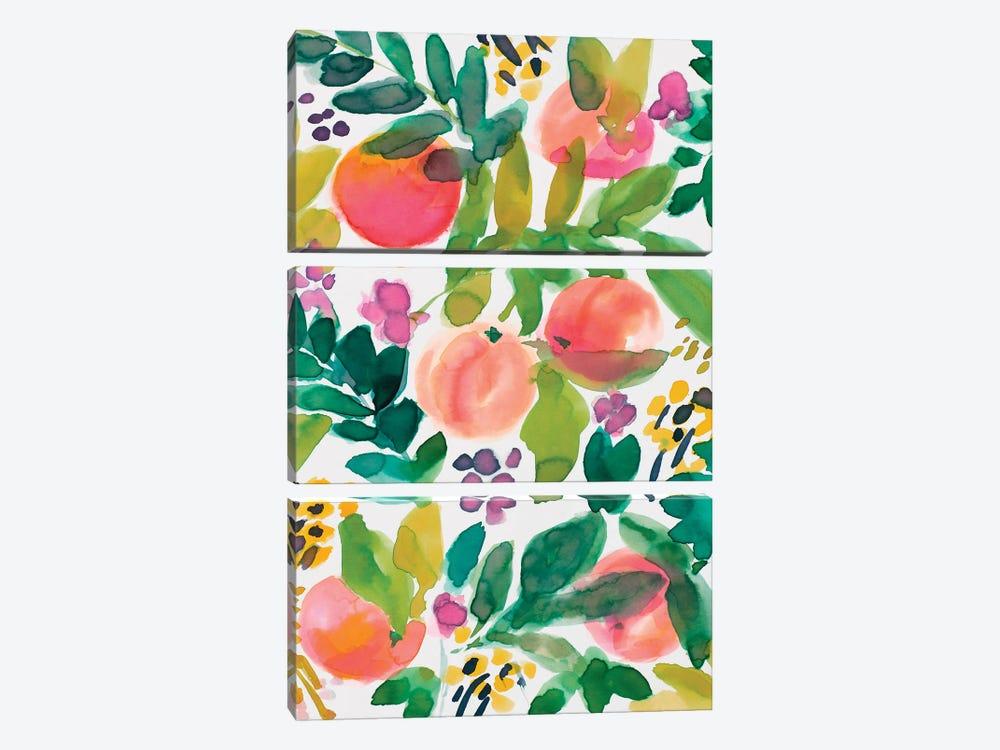 Garden Peaches by Lanie Loreth 3-piece Canvas Wall Art