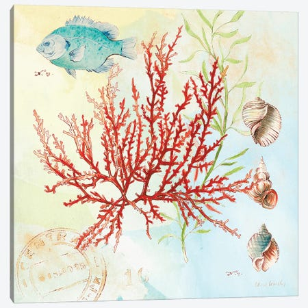 Deep Sea Coral I Canvas Print #LNL54} by Lanie Loreth Canvas Print