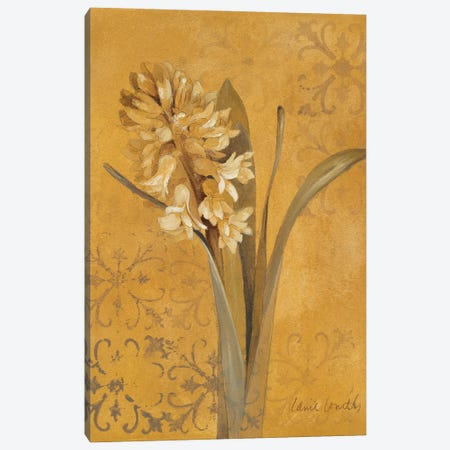 Hyacinth I Canvas Print #LNL551} by Lanie Loreth Canvas Art Print