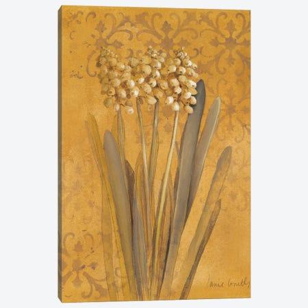 Hyacinth II Canvas Print #LNL552} by Lanie Loreth Art Print