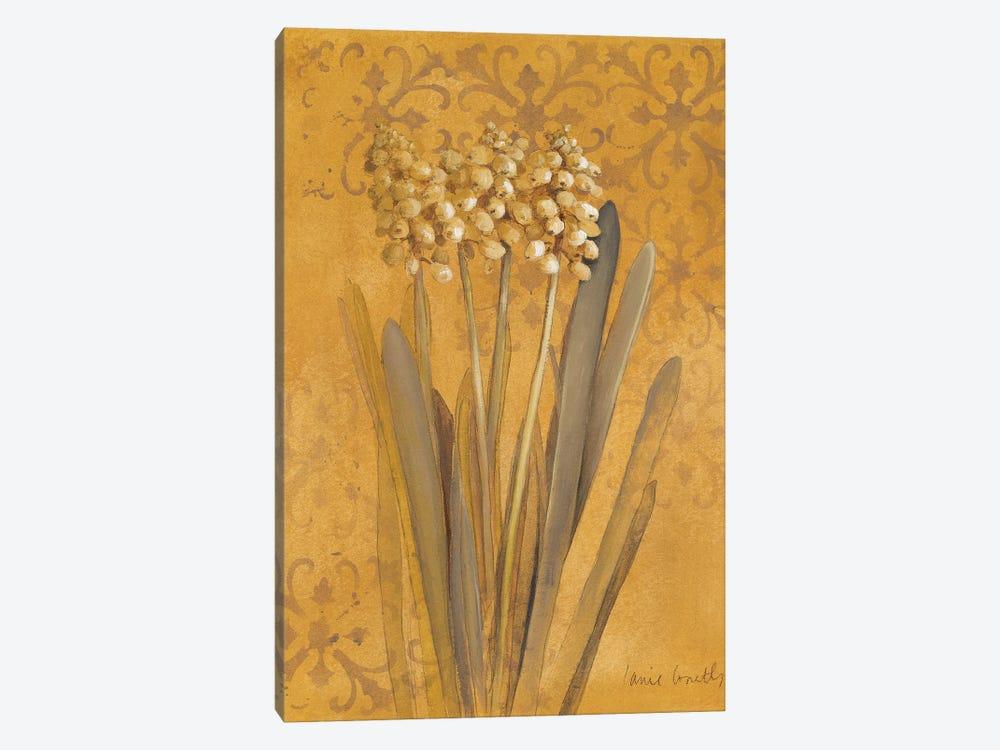 Hyacinth II by Lanie Loreth 1-piece Canvas Art Print