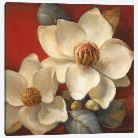 Magnolia Passion II Canvas Print #LNL556} by Lanie Loreth Canvas Wall Art