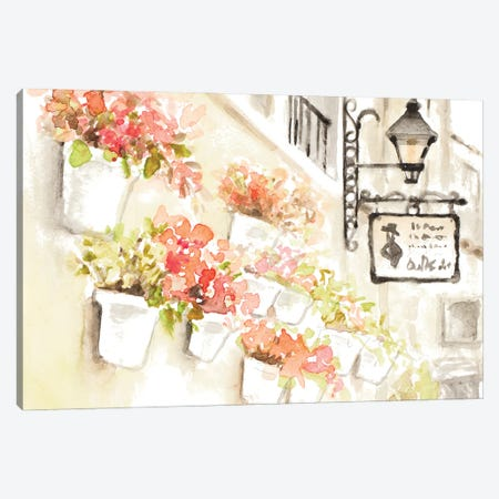 Paris Flowerpots Canvas Print #LNL565} by Lanie Loreth Canvas Art Print