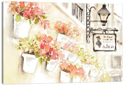 Paris Flowerpots Canvas Art Print