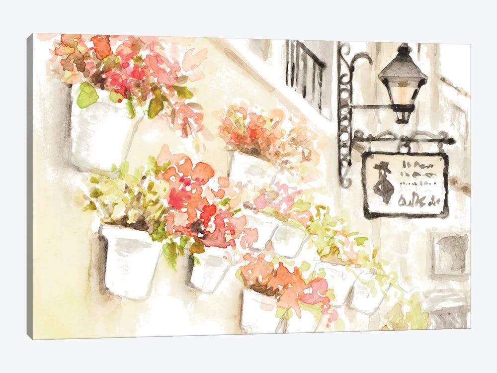 Paris Flowerpots by Lanie Loreth 1-piece Canvas Art Print