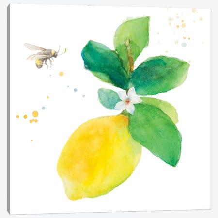 Bee-Friend The Lemon I Canvas Print #LNL594} by Lanie Loreth Canvas Artwork
