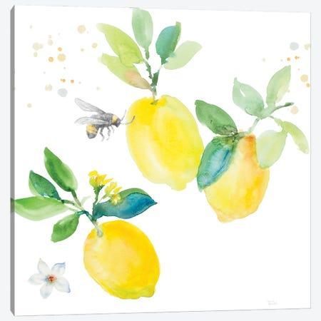 Bee-Friend The Lemon II Canvas Print #LNL595} by Lanie Loreth Canvas Wall Art