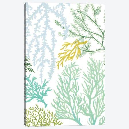 Budding Vertical Coral I Canvas Print #LNL600} by Lanie Loreth Art Print