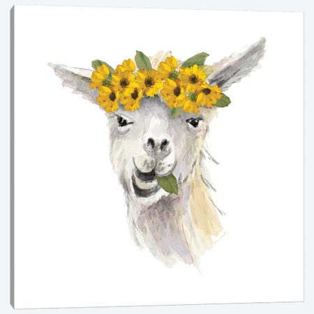 Floral Llama I Canvas Print #LNL66} by Lanie Loreth Canvas Artwork