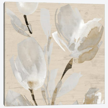 Neutral Tulips II Canvas Print #LNL670} by Lanie Loreth Canvas Art