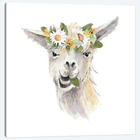 Floral Llama III Canvas Print #LNL68} by Lanie Loreth Canvas Print
