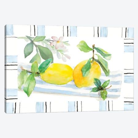Spring Citron Canvas Print #LNL699} by Lanie Loreth Canvas Art