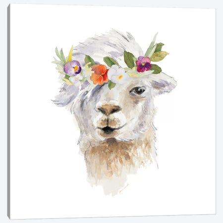 Floral Llama IV Canvas Print #LNL69} by Lanie Loreth Art Print
