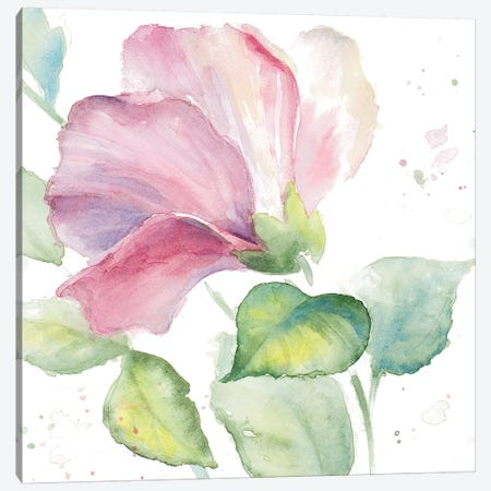 Fragrant Hibiscus I Canvas Print #LNL71} by Lanie Loreth Canvas Artwork