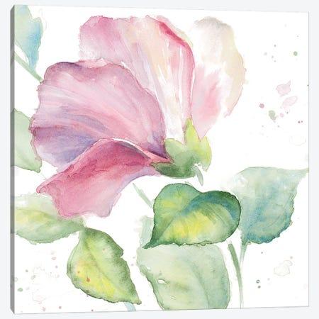 Fragrant Hibiscus I Canvas Print #LNL71} by Lanie Loreth Canvas Artwork