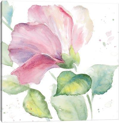 Fragrant Hibiscus I Canvas Art Print