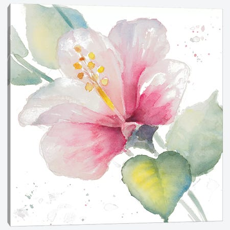 Fragrant Hibiscus II Canvas Print #LNL72} by Lanie Loreth Canvas Art