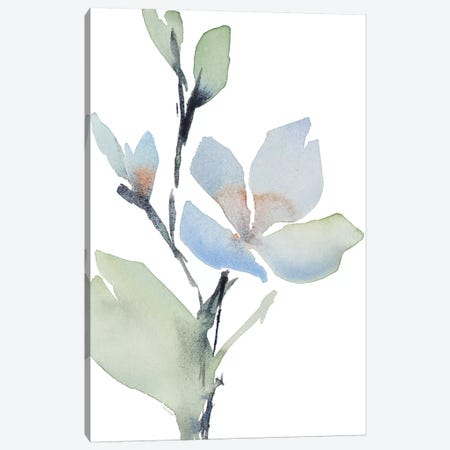 Glowing Blooms II Canvas Print #LNL81} by Lanie Loreth Art Print