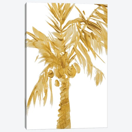 Gold Palms I Canvas Print #LNL82} by Lanie Loreth Art Print