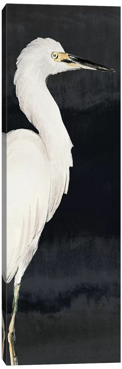 Heron on Black II Canvas Art Print