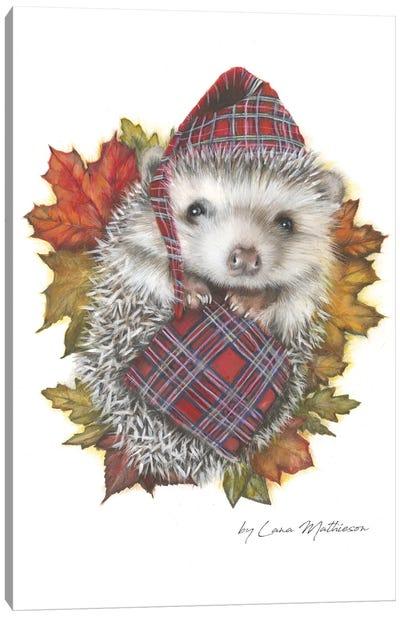 Autumn In Airdrie Canvas Art Print