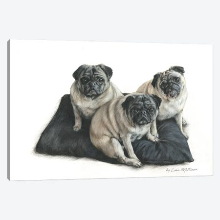 Three Pugs Canvas Print #LNM57} by Lana Mathieson Canvas Artwork