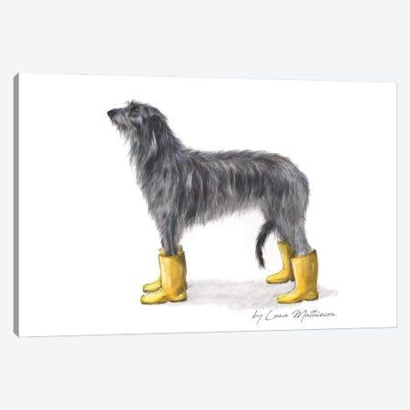 Yellow Welly Deerhound Canvas Print #LNM60} by Lana Mathieson Canvas Artwork