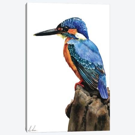 Kingfisher Canvas Print #LNN11} by Lisa Lennon Canvas Artwork