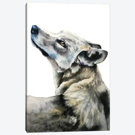 Wolf Canvas Print #LNN24} by Lisa Lennon Canvas Art