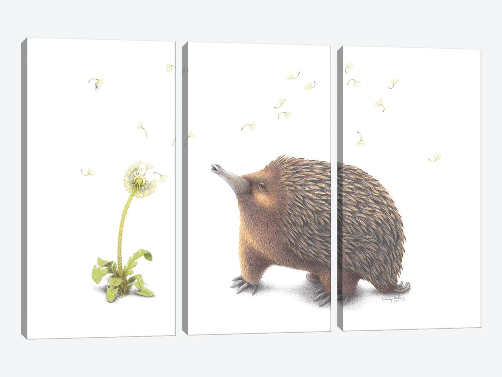 Echidna Wish by Lenny Pelling 3-piece Canvas Art