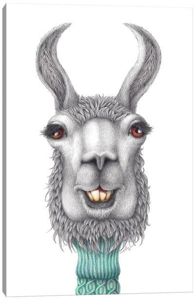 Llama Llama Ding Dong Canvas Art Print
