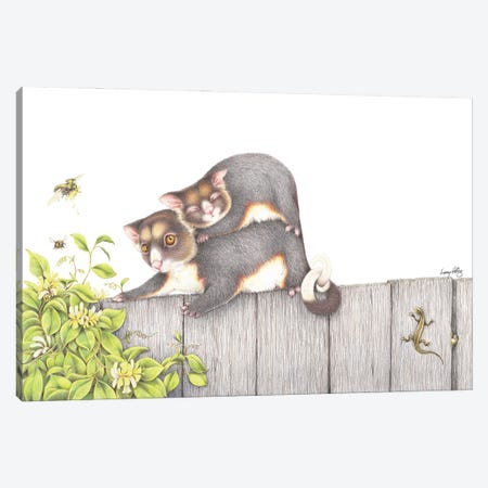 On The Fence Canvas Print #LNP27} by Lenny Pelling Canvas Wall Art