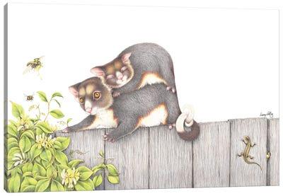 On The Fence Canvas Art Print