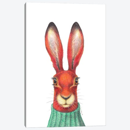 Problem Hare Canvas Print #LNP34} by Lenny Pelling Art Print