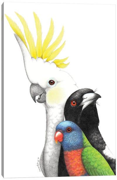 Birds Of My Backyard Canvas Art Print
