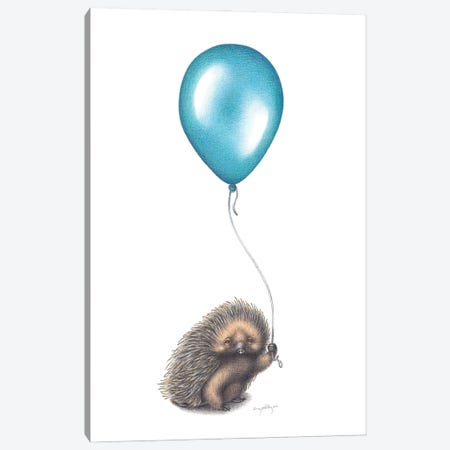 Doomed Balloon Canvas Print #LNP6} by Lenny Pelling Canvas Print