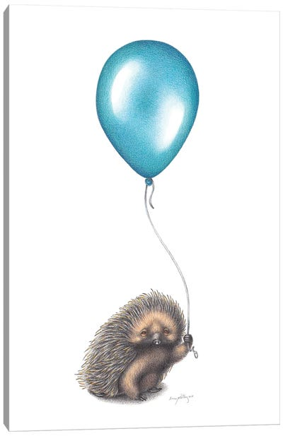 Doomed Balloon Canvas Art Print