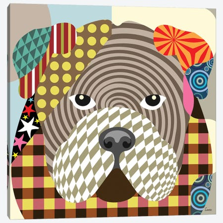 English Bulldog Canvas Print #LNR34} by Lanre Studio Canvas Art Print