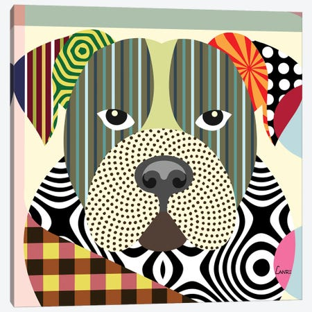 American Bulldog Canvas Print #LNR5} by Lanre Studio Canvas Print