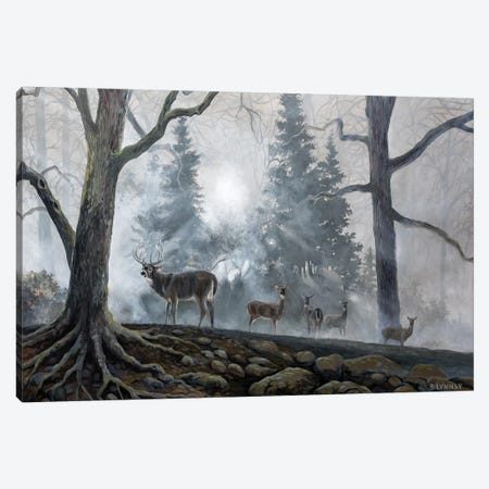 Deer Path I 3-Piece Canvas #LNS1} by B. Lynnsy Canvas Art Print
